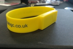 USB Wrist Bands